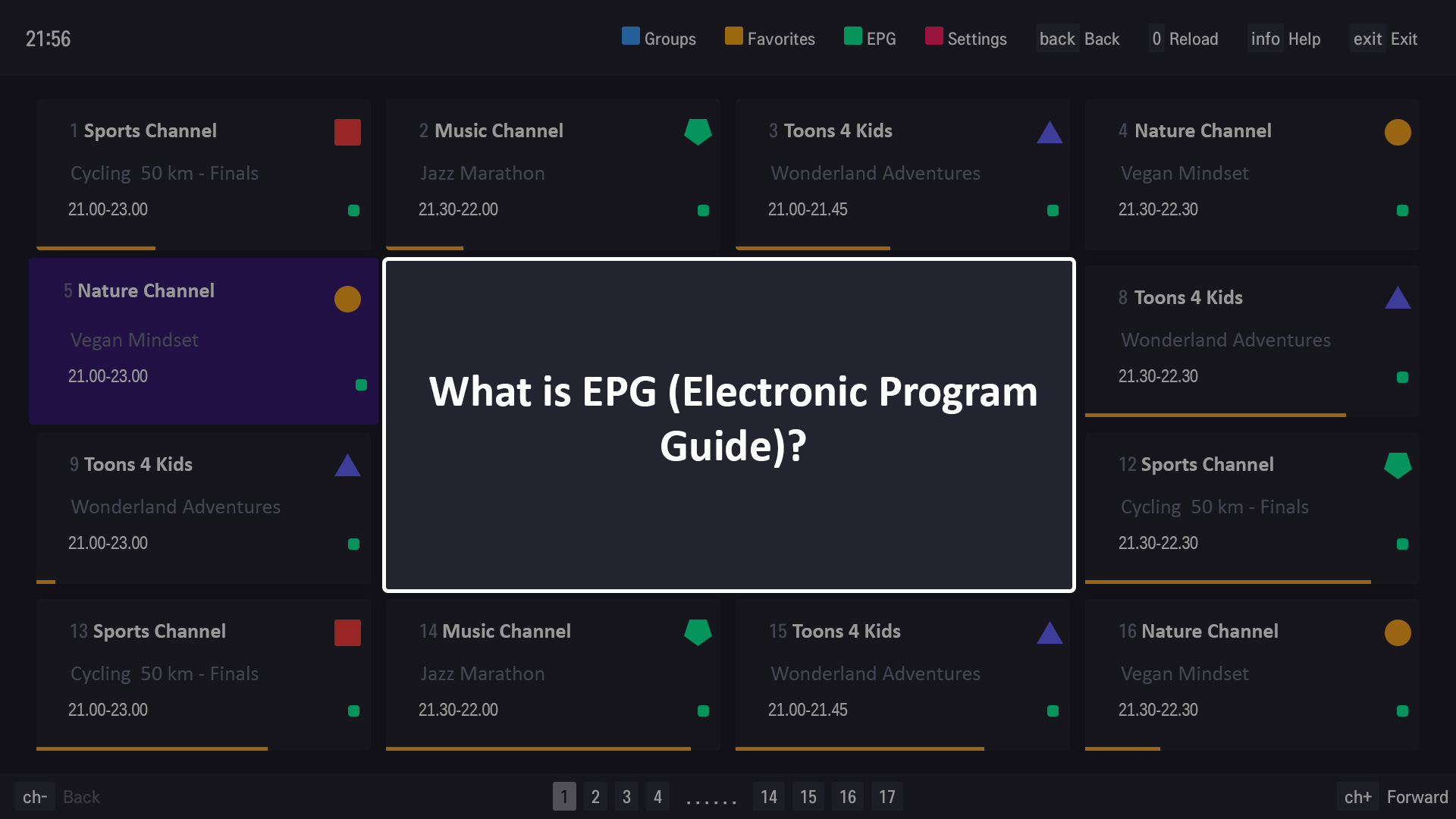 What is EPG (Electronic Program Guide)?